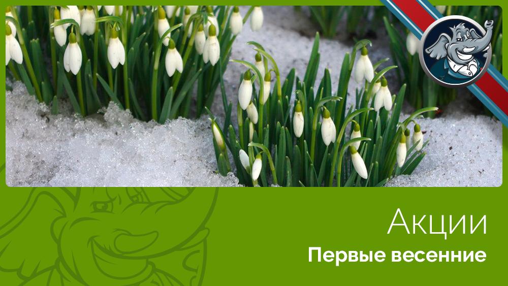 весна акции